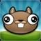 Noogra Nuts - The Squirrel