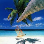 App Icon: Beach Relax 3.0