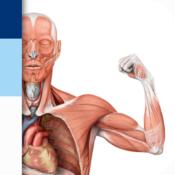 App Icon: PROMETHEUS - LernKarten der Anatomie 3.0.1