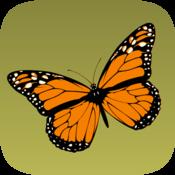App Icon: Schmetterlinge bestimmen