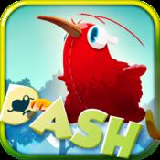 App Icon: Kiwi Dash