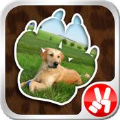 App Icon: Photo2Pets - Erstelle dein einzigartiges Tierfoto 5.2
