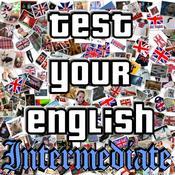 App Icon: Test Your English II.