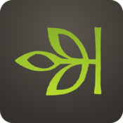 App Icon: Ancestry