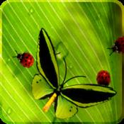 App Icon: Nette Insekten Gratis