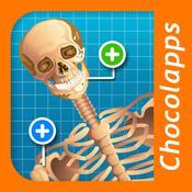 App Icon: Tom erklärt den menschlichen Körper 1.4
